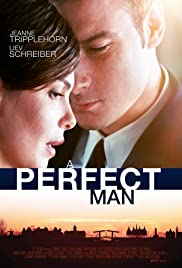 A Perfect Man 2013 poster