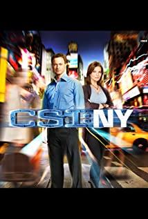 CSI: NY (2004) cover