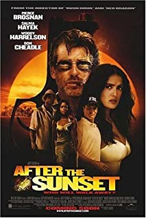 After the Sunset (2004) cover