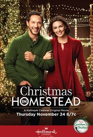 Christmas in Homestead (2016) cover