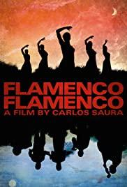 Flamenco, Flamenco (2010) cover