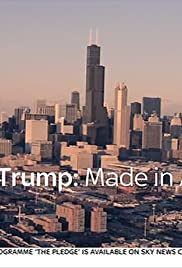 Trump: Made in America 2016 poster