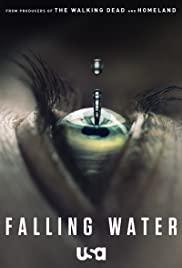 Falling Water 2016 poster