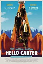 Hello Carter 2013 poster