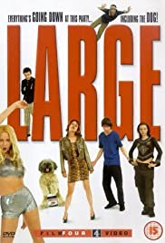 Large (2001) cover