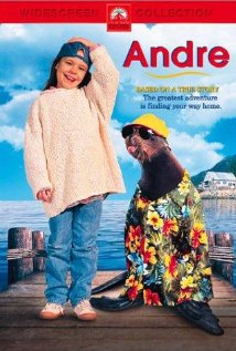 Andre (1994) cover