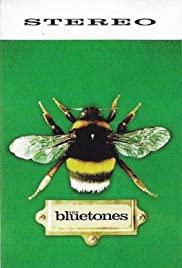 The Bluetones: Slight Return 1996 poster