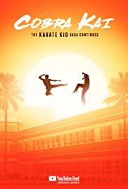 Cobra Kai 2018 poster